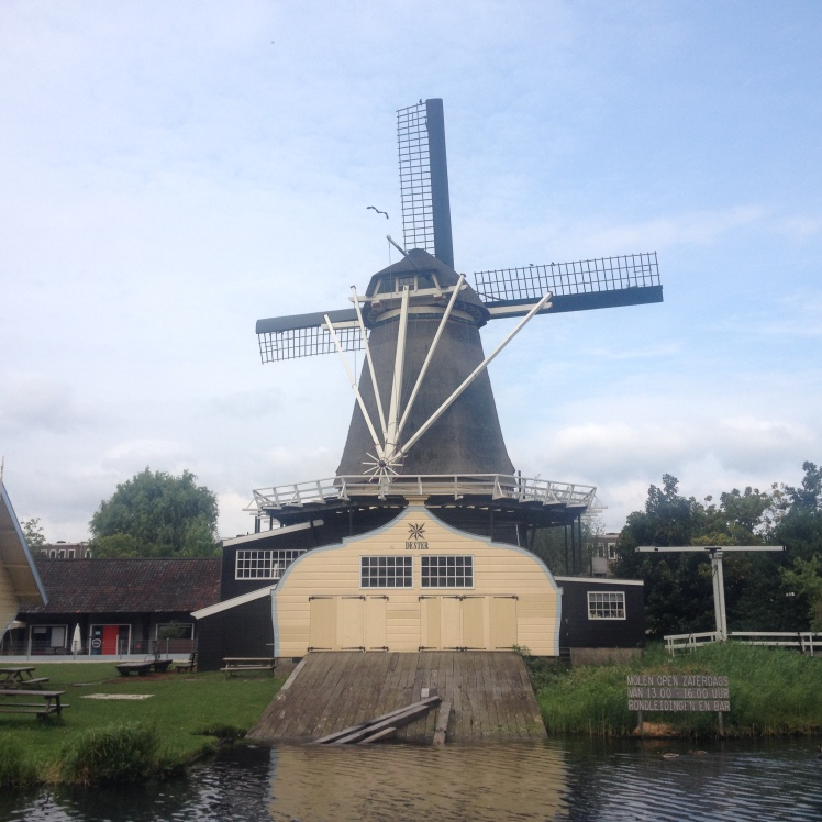 take-pictures-of-windmills-to-deal-with-your-post-erasmus-depression